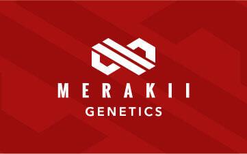 Merakii Genetics